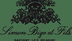 Simon Bize Logo